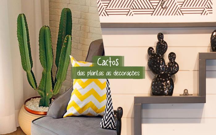 Cactos: tendência que vai das plantas as decorações