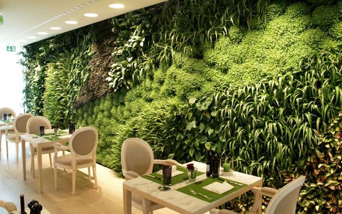 Invasão das plantas: jardins verticais e quadros vivos