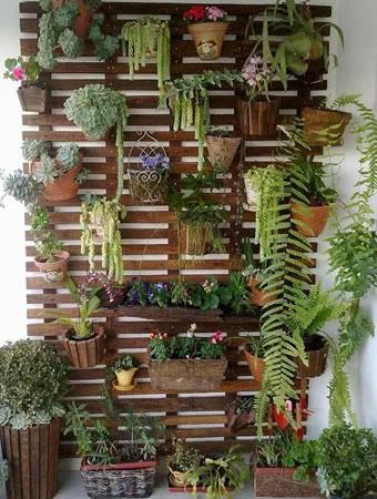 Jardim Vertical no Interior da Casa