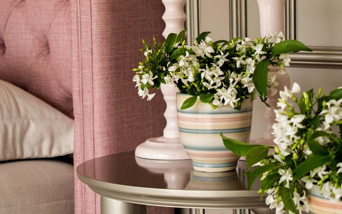 Coleção de Vasos com Listras rosas